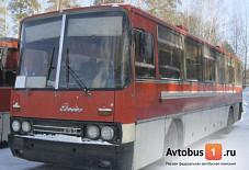 Ikarus 250 Красноярск